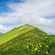 Risk and Reward on Augstmatthorn - Hike on the Steep Meadow Ridge in the Swiss Alps!
