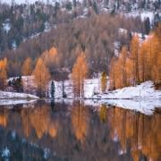 Easy Joy Hike and Photography Gold - Capture Gorgeous Mountain Lake Federa Near Cortina d'Ampezzo